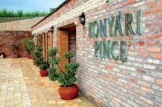 Konyári winary, Balatonlelle, South-Balaton wine region (HU)