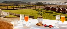 From the Central Coast to Napa Valley, here are the best places in California to stay during crush...