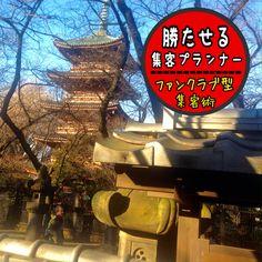 上野公園、ぼたん苑から見た五重塔。冬の陽射しが暖かいです!     #五重塔   #上野公園   #Tokyo
