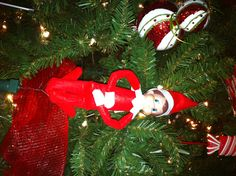 Taking a spin on the Christmas tree. Sheldon attached himself to the ornament spinner!!!  Elf on the Shelf, 2012