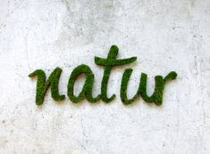 Always wanted to become a graffiti artist but didn't like the chemicals you have to use? Enter moss graffiti: the most eco-friendly form of street art. Moss Grafitti, Graffiti En Mousse, Ideias Diy, Green Building, Cool Stuff, Street Art, Anna, Lettering, 3d Typography