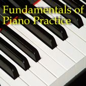 "I can't believe that this entire book is available in a free, downloadable .pdf!!! ""Fundamentals of Piano Practice"" by Chuan C. Chang. This book teaches the most efficient methods known for learning piano."