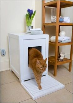 Litter Box Idea  If I Ever Get A Kitty