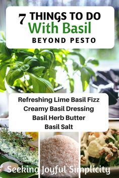 DIY Food Preservation Tips and Recipes : Not just for pesto and pasta, let's talk about how to use fresh basil to make lime basil fizz, basil herb butter, basil vinegar, and more. -Read More – Fresh Basil Recipes, Herb Recipes, Recipes With Fresh Herbs, Recipes Dinner, Dinner Ideas, Creamy Basil Dressing, Cooking Tips, Cooking Recipes, Vegan Recipes