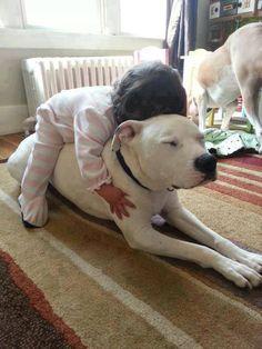 No pitbulls were hurt during this photoshoot..
