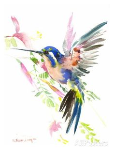 Painting Watercolor Birds Art Illustrations 36 Ideas For 2019 Watercolor Bird, Watercolor Animals, Watercolor Paintings, Watercolor Hummingbird, Watercolor Tattoo, Paintings Of Birds, Watercolor Ideas, Art Paintings, Hummingbird Art