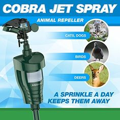 Hoont Cobra Powerful Outdoor Water Jet Blaster Animal Pest Repeller Motion Activated Expels Cats Dogs Squirrels Birds Deer Etc. Out of Your Property (Upgraded Version) Motion Activated Sprinkler, Water Sprinkler, Pest Solutions, Garden Guide, Garden Ideas, Fence Ideas, Picture Design, Pest Control, Amazing Gardens