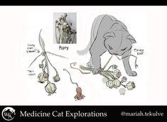Warrior Cats Fan Art, Warrior Cats Art, Love Warriors, Creature Drawings, Feral Cats, Cute Animal Drawings, Cat Design, Fantasy Creatures, Furry Art