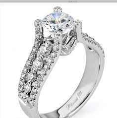This is the one!!! http://www.michaelmcollection.com/Engagement-rings/Estrella/default.asp?Style=R513&offset=