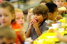 More School Kids Are Eating Fruits and Veggies But More Food Is Also Going to Waste: http://onegr.pl/1hjeyla