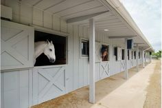 SPECTACULAR EQUESTRIAN PROPERTY  |  Mettawa, IL  |  Luxury Portfolio International Member - Baird & Warner