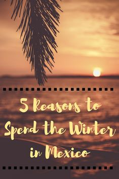 Mexico is the ULTIMATE warm winter vacation spot! Looking for warm winter vacation ideas? Mexico is a fantastic winter getaway! Click visit to read more. #wintervacation #beachvacation #warmwintervacation #Mexico #travel #wintergetaway