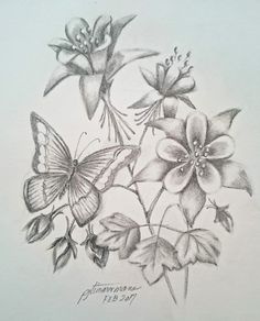 I'd rather be drawing! Columbine flowers and butterfly