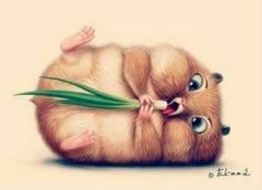 20 Cute and Easy Cartoon Hamster Drawing Ideas Cute Animal Illustration, Cute Animal Drawings, Cute Drawings, Illustration Art, Cute Baby Animals, Funny Animals, Illustration Mignonne, Art Mignon, Cute Hamsters