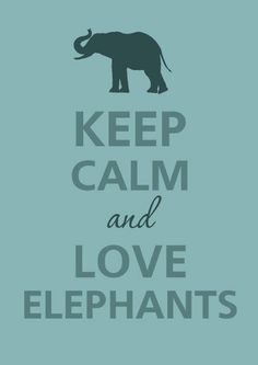 Keep calm and love elephants. I have to show this to one of my old teachers she loves Elephants, not that I don't I love them I love all animals. All About Elephants, Elephants Never Forget, Save The Elephants, Elephants Photos, Baby Elephants, Giraffes, Image Elephant, Elephant Love, Elephant Stuff