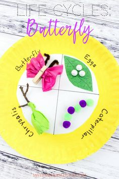 The Life Cycle of a Butterfly! The perfect art and craft project for preschool and kindergarten kids. #lifecycle #butterfly