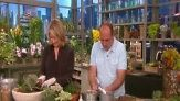 Martha Stewart and guest Jerry Fritz plant hearty succulents in stone-filled pots.
