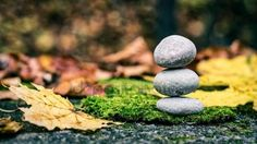 Stones in nature, autumn pictures