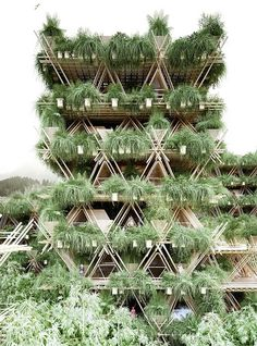 Splendid Bamboo Treehouse in Beijing  In Beijing the Home of Penda architecture firm has just built a bamboo green home. This revolutionary concept was nominated at the ADesign ceremony in 2016. Eco-responsibility is maximum because the bamboo used is recycled and comes from the region.         #xemtvhay