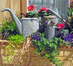 Window boxes ~ The most utilitarian garden items make great ornaments as well.
