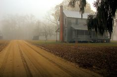 Long County GA Jones Creek Wefanie Area Henry Walcott Farmhouse Antebellum Vernacular Architecture Landmark Foggy Morning Dirt Road Picture Image Photo © Brian Brown Vanishing South Georgia USA 2012