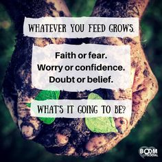 What are you focusing on? The more you worry or pray about something, the more you feed it. So what are you feeding in your thoughts and prayers today? Biblical Inspiration, Wise Quotes, Wise Sayings, No Worries, Wise Words, Favorite Quotes, Leadership, Confidence, Prayers
