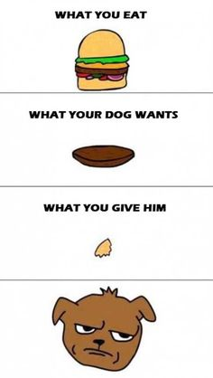 POOR DOGS...