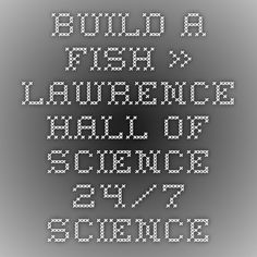 Build a Fish » Lawrence Hall of Science - 24/7 Science