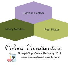 Highland Heather Colour Combo - Colour Inspiration Stampin' Up! Colour Re-Vamp 2018 #stampinupcolor #dlbcraft #stampinupdemonstrator