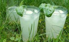 Pripravte si jednoduché a chutné limonády, ktoré vás osviežia počas slnečných dní. Viete si ich pripraviť z bežne dostupných surovín a víde vás to lacnejšie, ako kupovanie limonád z obchodov. Summer Drinks, Glass Of Milk, Detox, Smoothie, Food And Drink, Lose Weight, Syrup, Alcohol, Essen