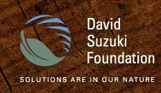 The @davidsuzukifoundation is dedicated to protecting the diversity of nature and inspiring Canadians to act with nature in mind.