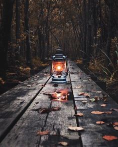 Image uploaded by ❥ Bambi. Find images and videos about light, autumn and leaves on We Heart It - the app to get lost in what you love. Autumn Photography, Creative Photography, Photography Contests, Foto Fantasy, Old Lanterns, Dark Autumn, Autumn Aesthetic, Fall Pictures, Autumn Inspiration