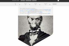 triangulate images