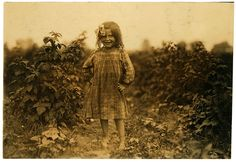 Laura Petty, 6 yr old berry picker on Jenkins farm, Rock Creek, Maryland, 1909