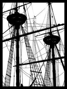 Joe Bagley Papercut- album on Flickr