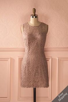 Franzisca from Boutique 1861 Cocktail, Diva Fashion, Pink Lace, Dusty Pink, Short, Pretty Dresses, Bridesmaid Dresses, High Neck Dress, Couture