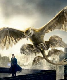 Thunderbird Fantastic Beasts | The Thunderbird, ©JK Rowling and ©Warner Bros Pictures