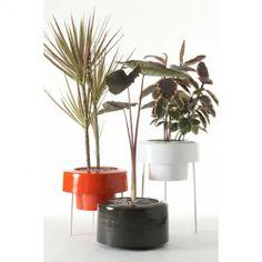 Pod Planters ($48.00) - Svpply