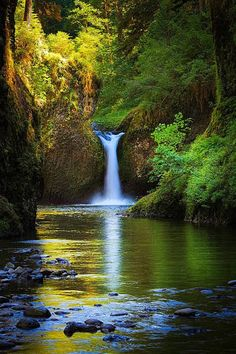 Punchbowl Falls on Eagle Creek, #Oregon   photo by Inge Johnsson