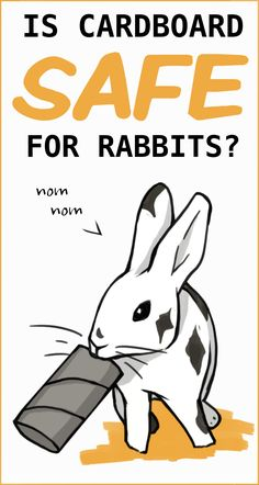 Is cardboard safe for rabbits to chew on?