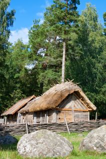 Viking home.jpg - What I am inclined to think Agnarr built for himself just outside of Tuaim Rithe.