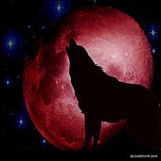 Howlin @ blood Moon by lousephyr on DeviantArt