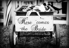 5 Tips for New Wedding Photographers  wedding photography
