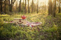 picnic | outdoors | simple | montana