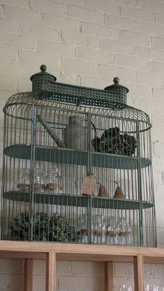Bird cage used to display treasures