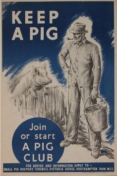 The first rule of Pig Club... (UK WWII: Families could keep one pig, even in some city situations)
