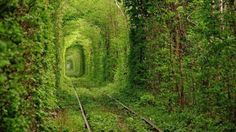 The World's 20 Most Amazing Tunnels (PHOTOS) | The Weather Channel