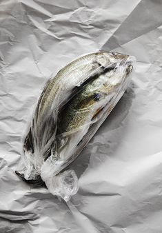 packaged fish in plastic sheet | fisch & seafood . Fisch & Meeresfrüchte . poisson & fruits de mers | Artist / Künstler: Kara Rosenlund |