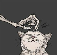 and it's everywhere / night-time illustrations / Ig: - Art - Katzen / Cat Art And Illustration, Art Illustrations, Skeleton Art, Skeleton Makeup, Skull Makeup, Arte Obscura, Halloween Wallpaper, Halloween Art, Vintage Halloween