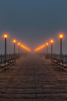 San Francisco, California~  (Source: 500px.com, via imawalkingdisasterrr)